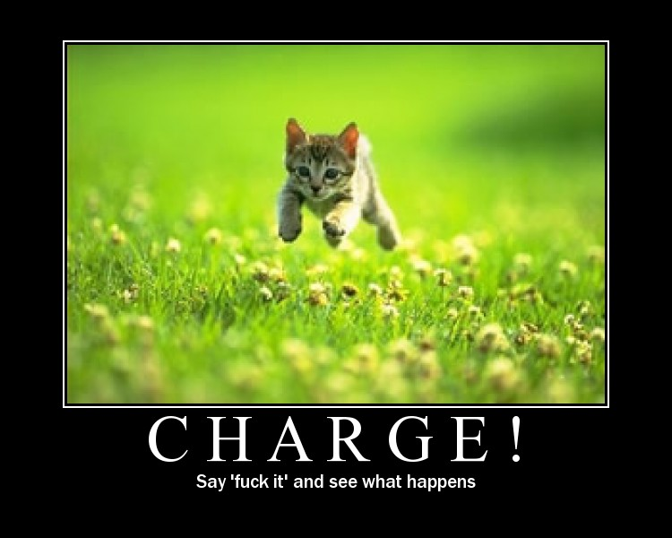Animals-Charge.jpg